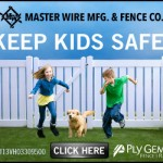 MasterWire Fencing Web Graphics //